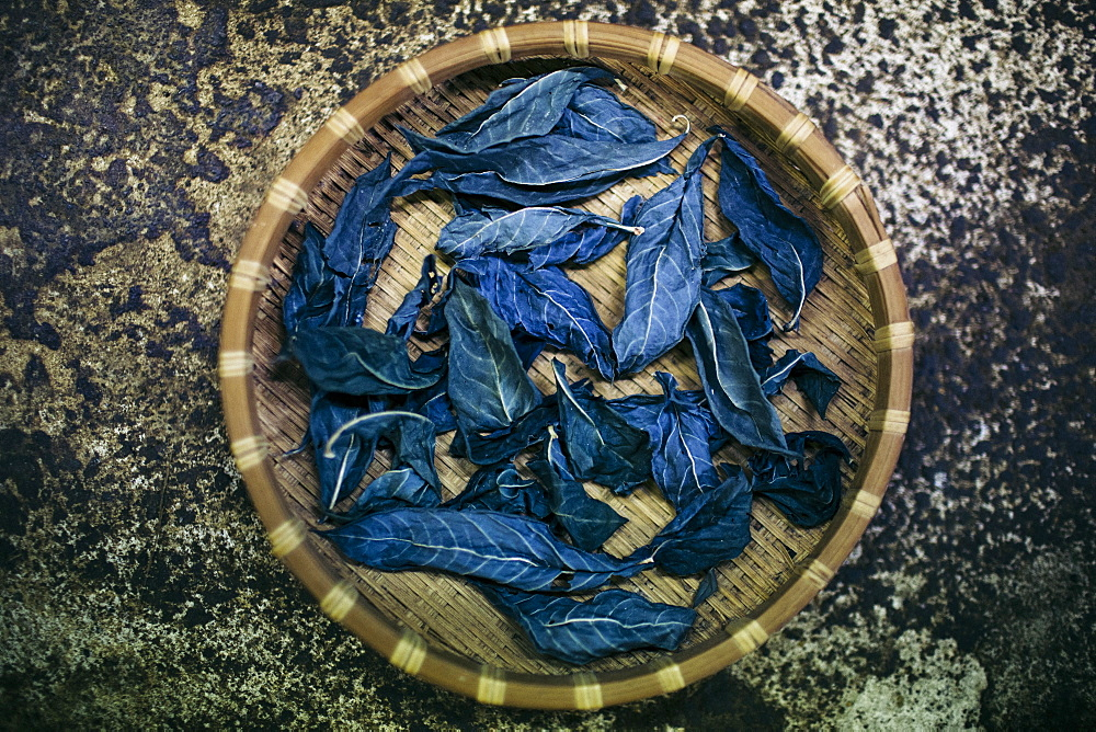 High angle close up of basket with indigo leaves used to dye cotton, Kyushu, Japan