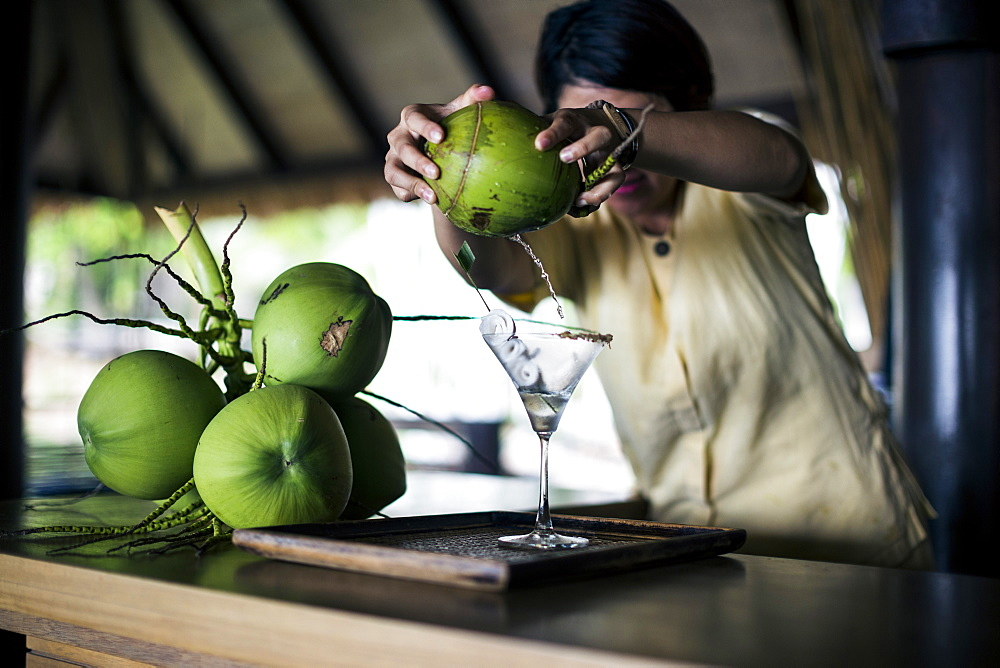 A bartender mixing a martini (Praow-Tini) out of a coconut shaker, Thailand