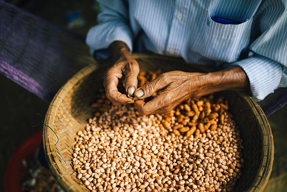 High angle close up of man shelling peanuts outside of his house, Vietnam