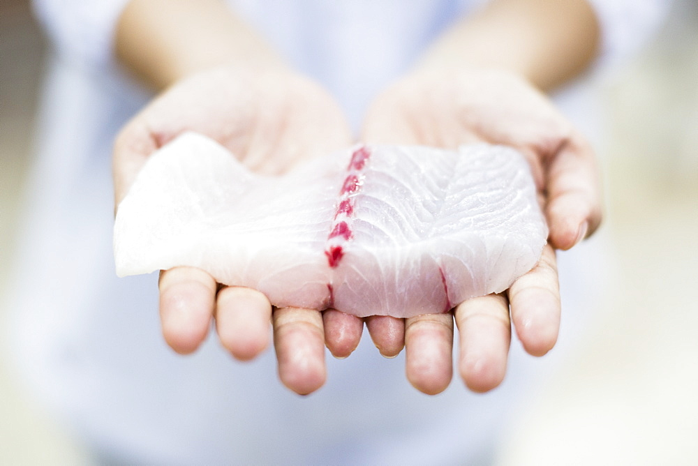 High angle close up of hands holding fresh fillet of white fish, Barramundi, Asian Sea Bass, Vietnam