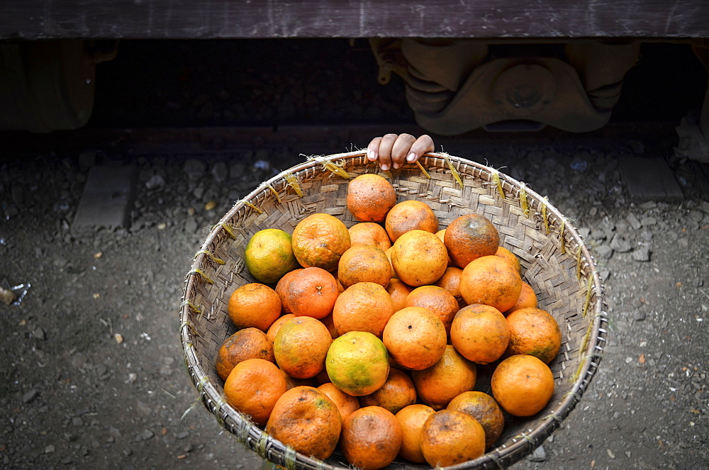 High angle close up of basket of orange citrus fruits in Myanmar, Lake Inle, Myanmar