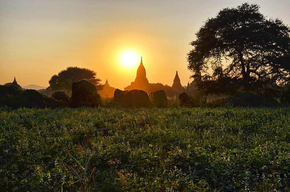 Sunset over distant stupa of temple in Bagan, Bagan, Myanmar