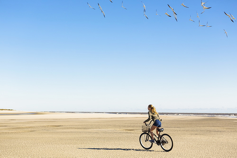 A teenage girl cycling on sand towards a flock of seagulls, St Simon's Island, Georgia, United States