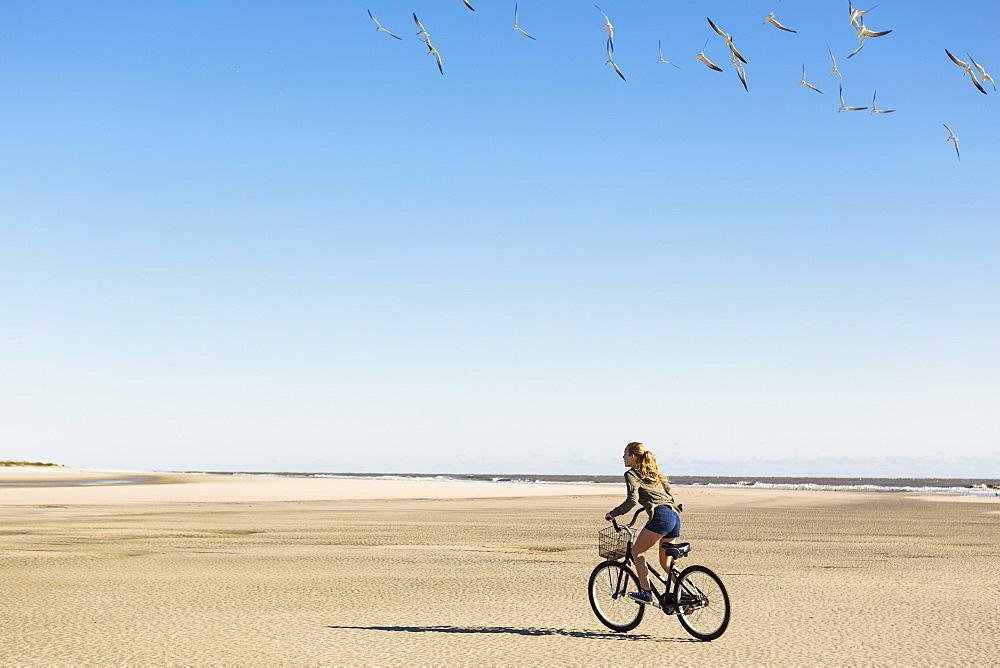 A teenage girl cycling on sand towards a flock of seagulls, St Simon's Island, Georgia, United States