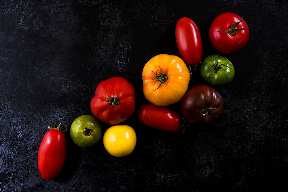 High angle close up of a selection of tomatoes in various shapes and colours on black background, United Kingdom