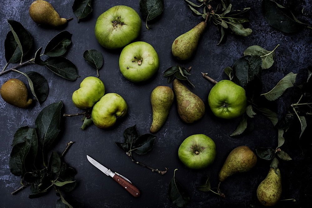 High angle close up of green pears and Bramley apples on black background, United Kingdom - 1174-7866