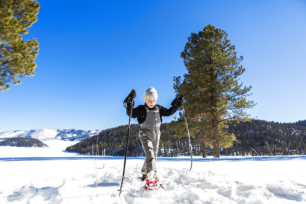 A six year old boy with snow shoes and ski poles - 1174-7971