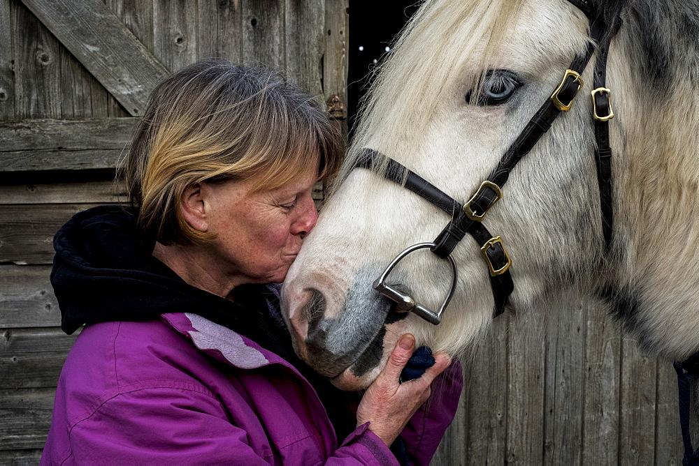 Woman standing outside stable, kissing white Cob horse, Berkshire, United Kingdom