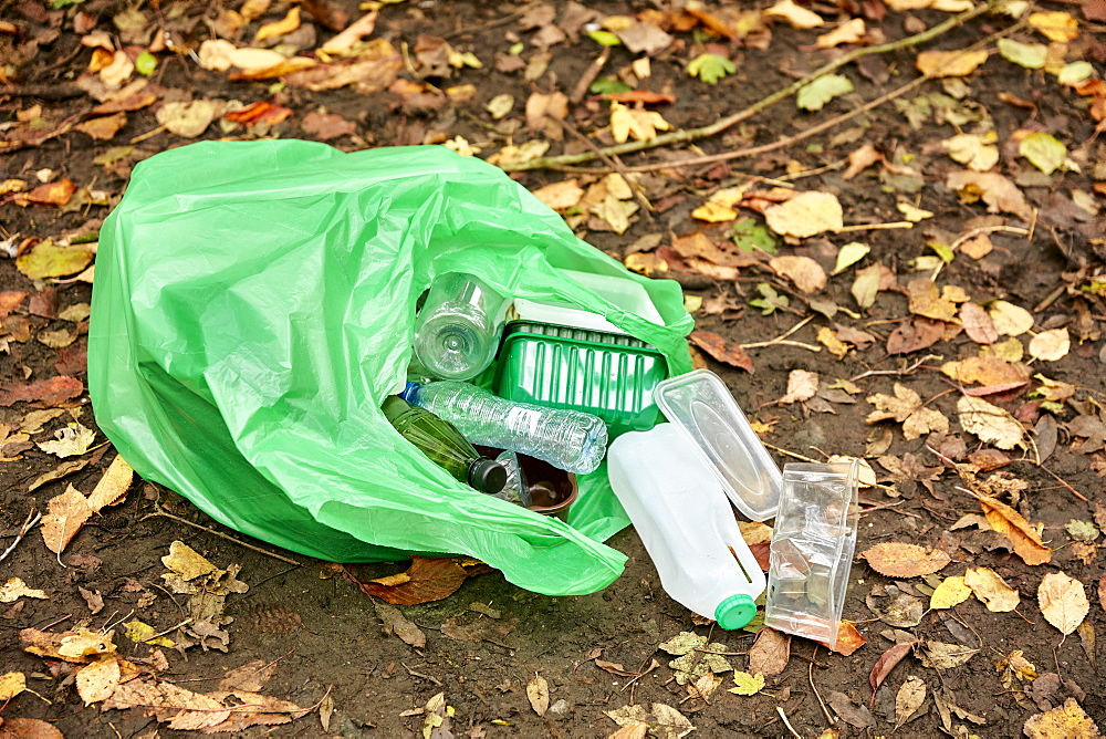 Plastic bag filled with plastic litter spilling on to woodland floor, Bristol, United Kingdom