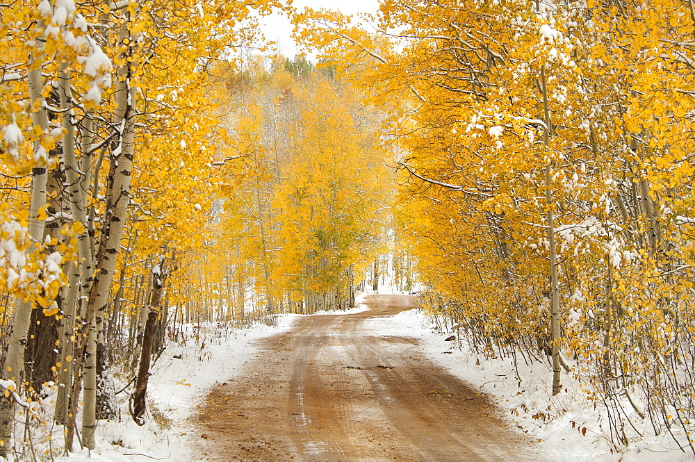 A road in the Uinta Mountains, with light snow on the ground, Uinta Mountains, Utah, USA