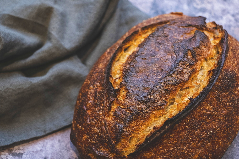 Country loaf, a baked sourdough loaf with a dark crust