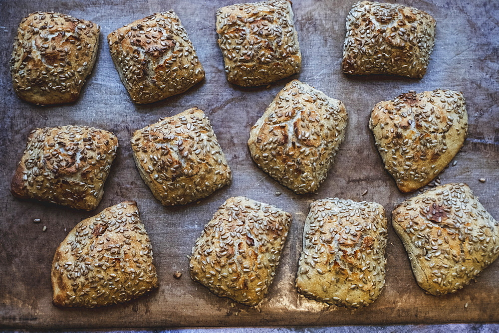 Artisan bakery making special sourdough bread, a tray of baked seeded loaves