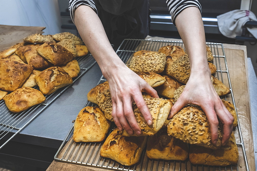 A baker loading baked seeded buns on a tray