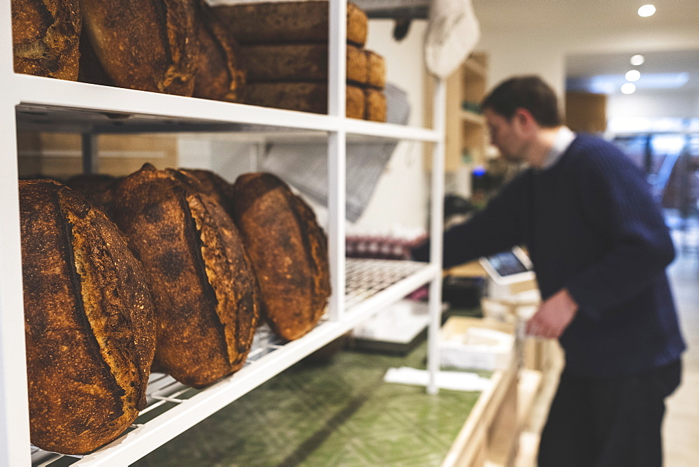 Artisan bakery making special sourdough bread, racks of cooked loaves