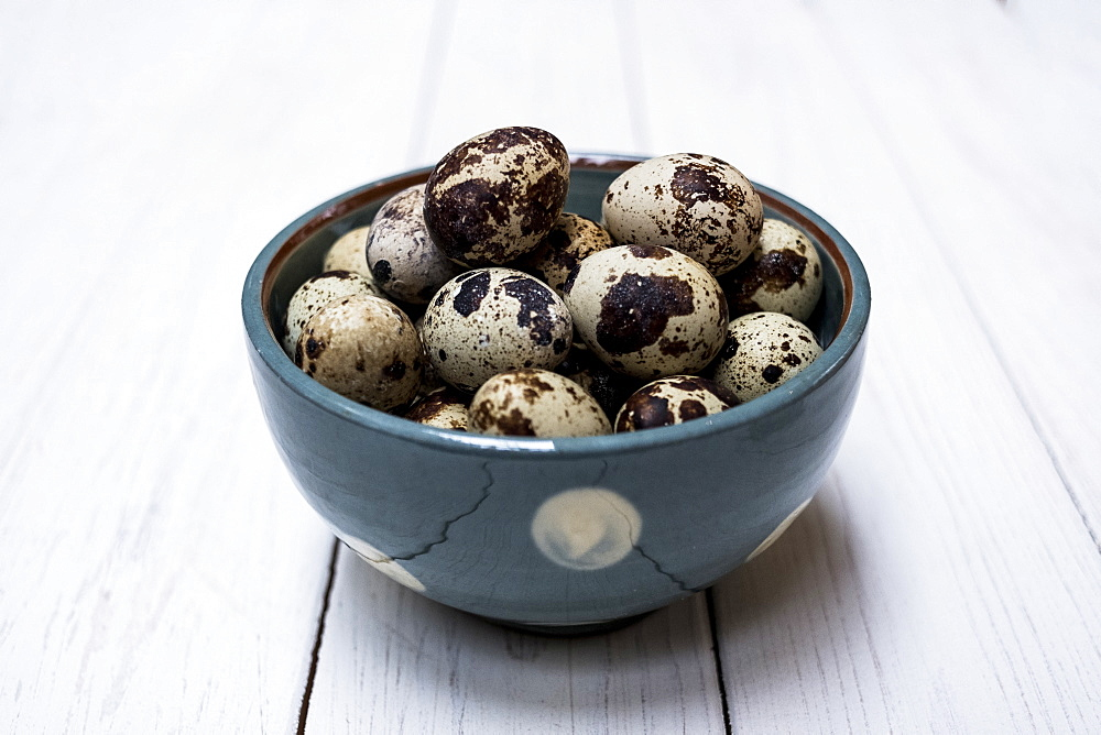 Close up of quail eggs in blue bowl on white wooden table