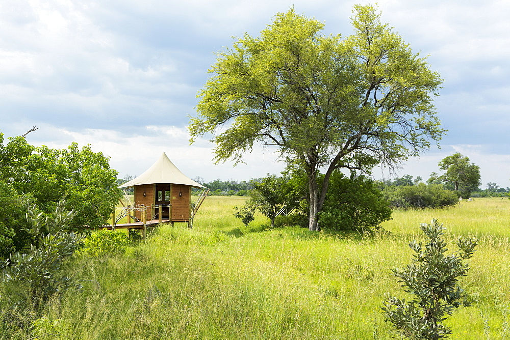 A safari camp, view across grassland and trees and a small pavilion and observation platform on stilts above the grass