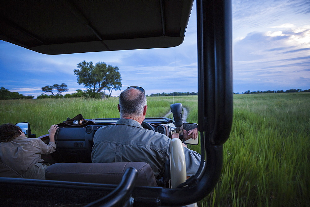 Rear view of safari guide driving safari vehicle in grass, Botswana