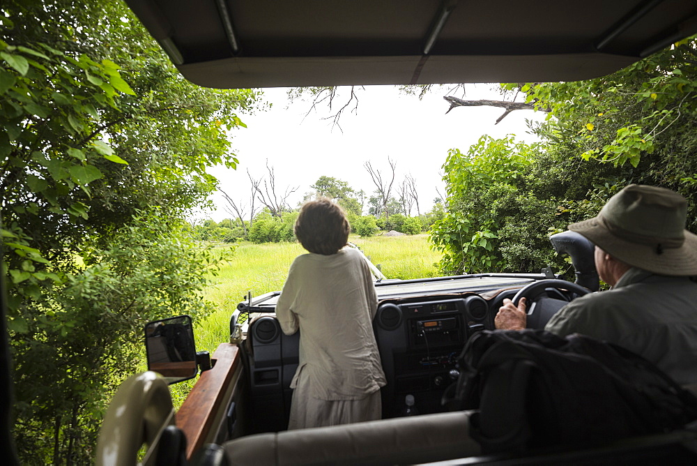 A six year old boy standing up in a safari vehicle, looking at the landscape, Botswana