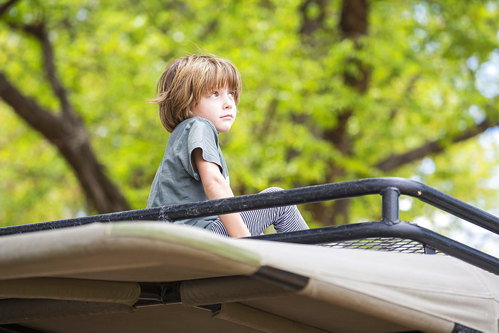 A five year old boy seated on the observation platform of a safari jeep under trees, Okavango Delta, Botswana