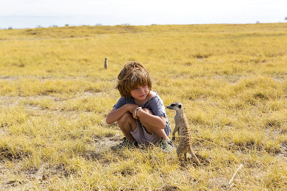 5 year old boy looking at Meerkats, Kalahari Desert, Makgadikgadi Salt Pans, Botswana