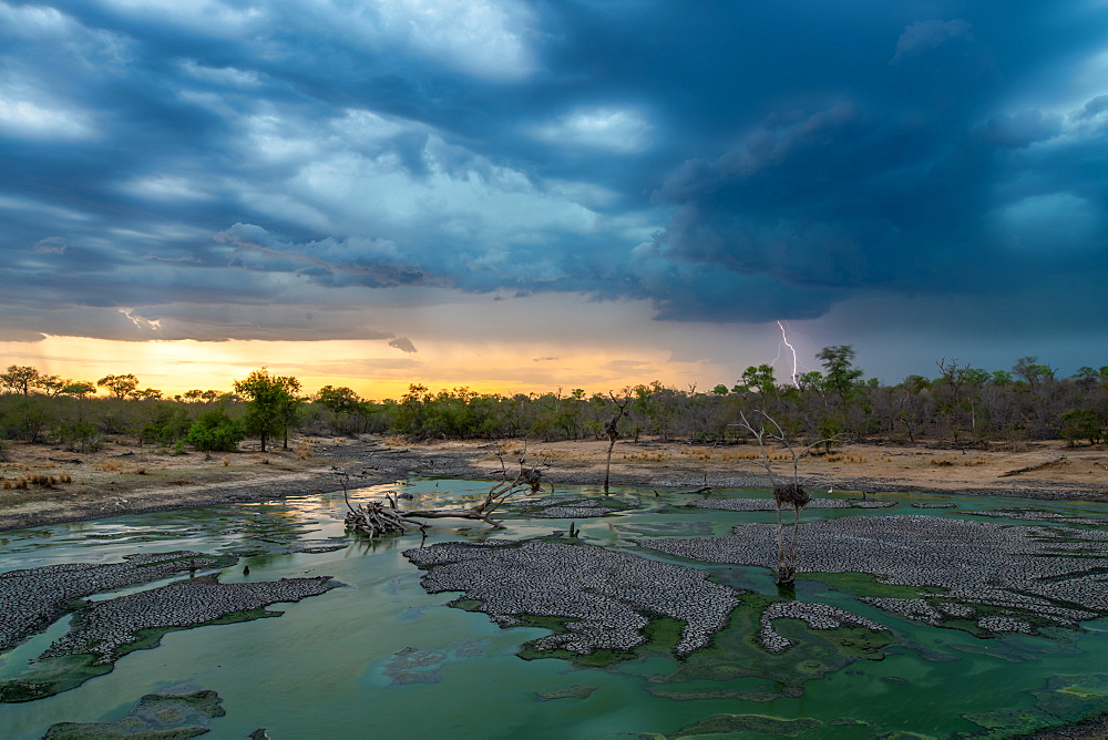 A landscape with a waterhole in the foreground and a sunset with dark clouds, rain and lightning in the background, Sabi Sands, Greater Kruger National Park, South Africa