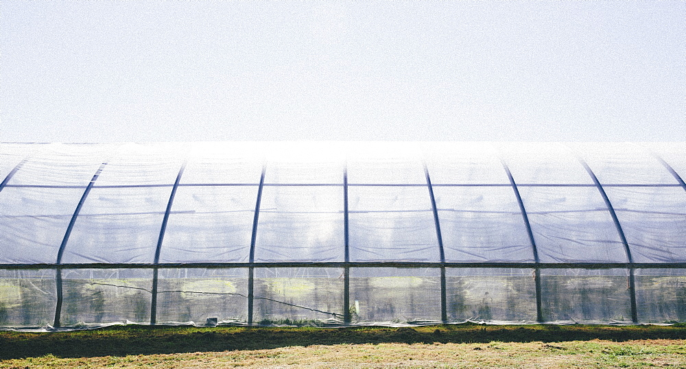 A polytunnel for growing crops with an opaque covering