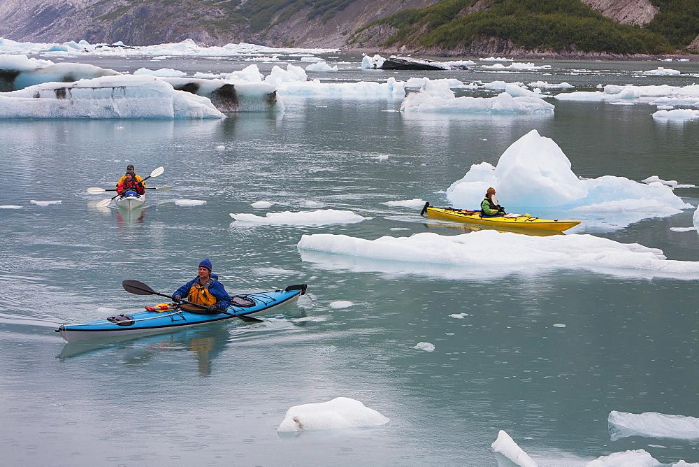 Sea kayakers paddling in glacial lagoon at a glacier terminus on the coast of Alaska - 1174-8950