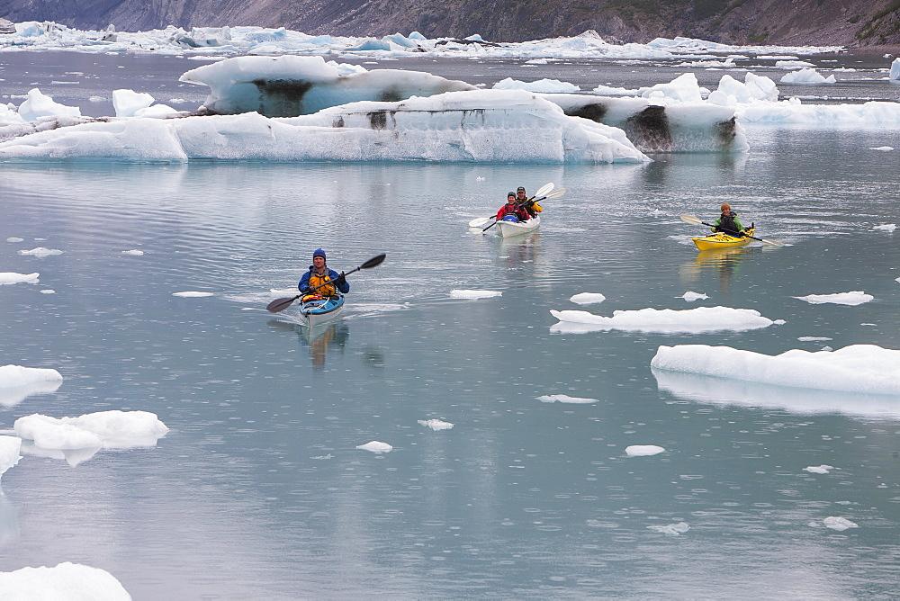 Sea kayakers paddling in glacial lagoon at a glacier terminus on the coast of Alaska - 1174-8951
