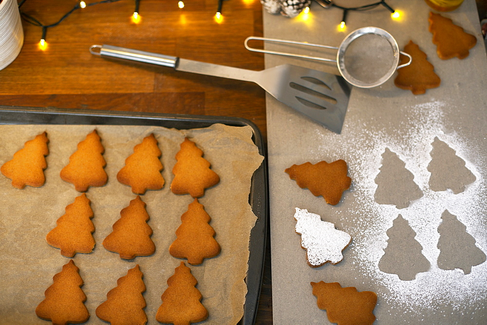 High angle close up of Christmas Tree cookies on a baking tray - 1174-9258