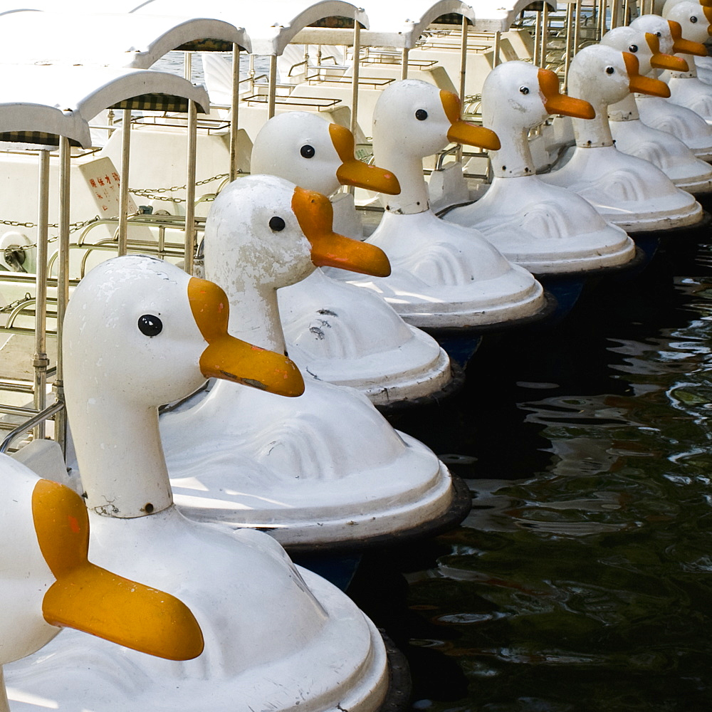 Paddle Boats With Swan Heads at Beihai Park, Beijing, China