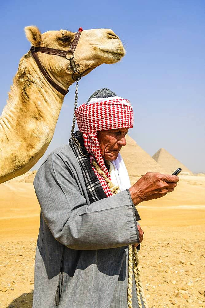 A guide in traditional Arab dress, robe and turban using a mobile phone, and his camel. - 1174-10035