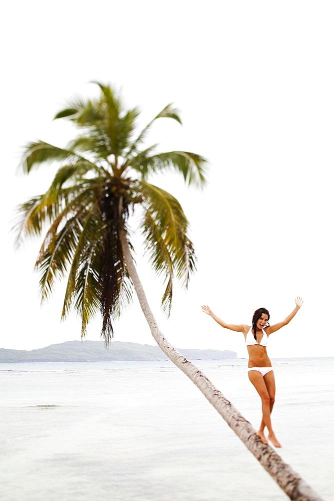 A woman balancing on a leaning palm tree in Las Galeras, Samana Peninsula, Dominican Republic, Samana Peninsula, Dominican Republic.