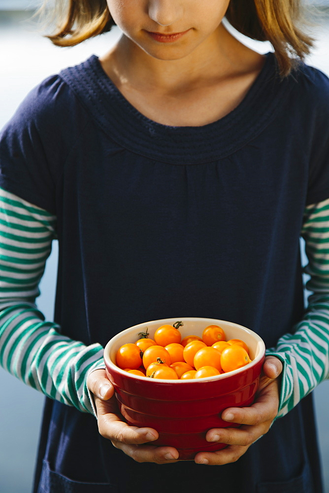 Nine year old girl holding bowl of organic yellow cherry tomatoes, Seattle, Washington, USA