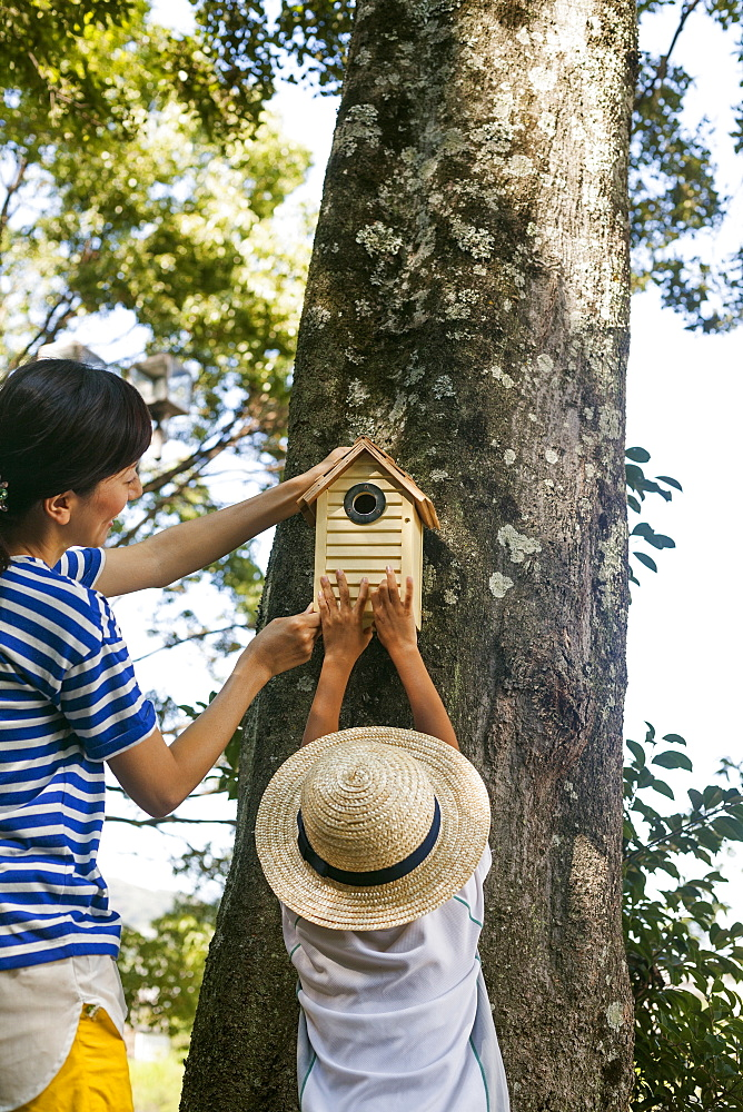Mother and daughter putting a bird house on a tree, Kyoto, Honshu Island, Japan