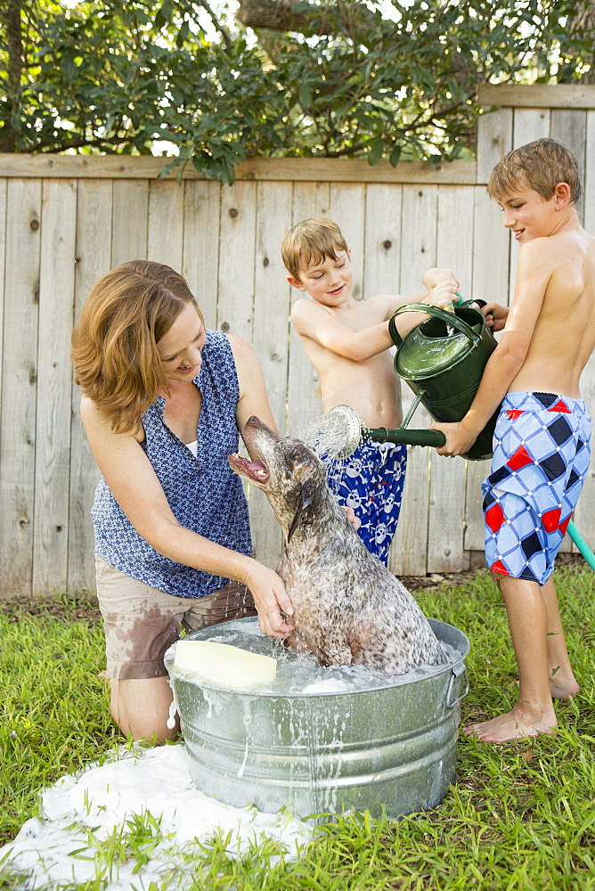 A family in their garden, washing a dog in a tubAustin, Texas, USA