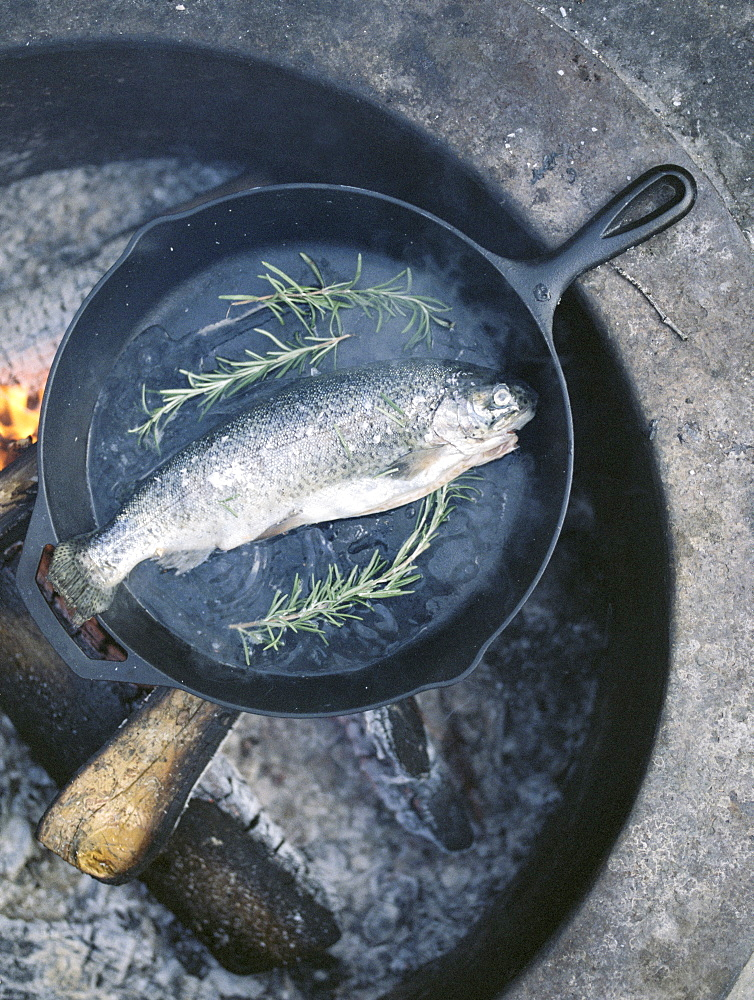 Fish in a frying pan over an outdoor fire, Millcreek, Utah, United States of America
