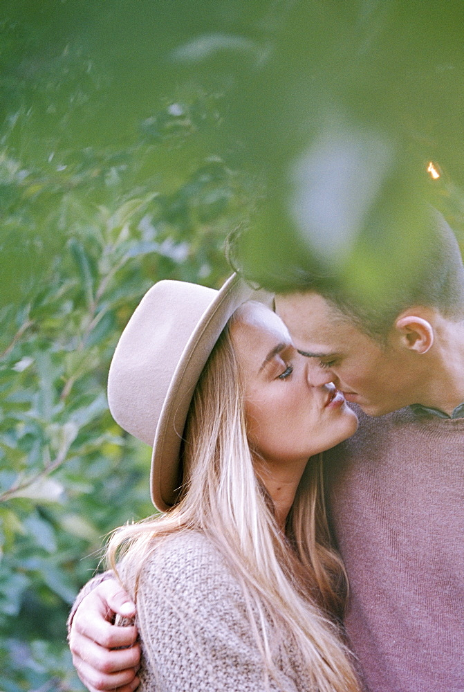 An apple orchard in Utah. A couple kissing, Sataquin, Utah, United States of America