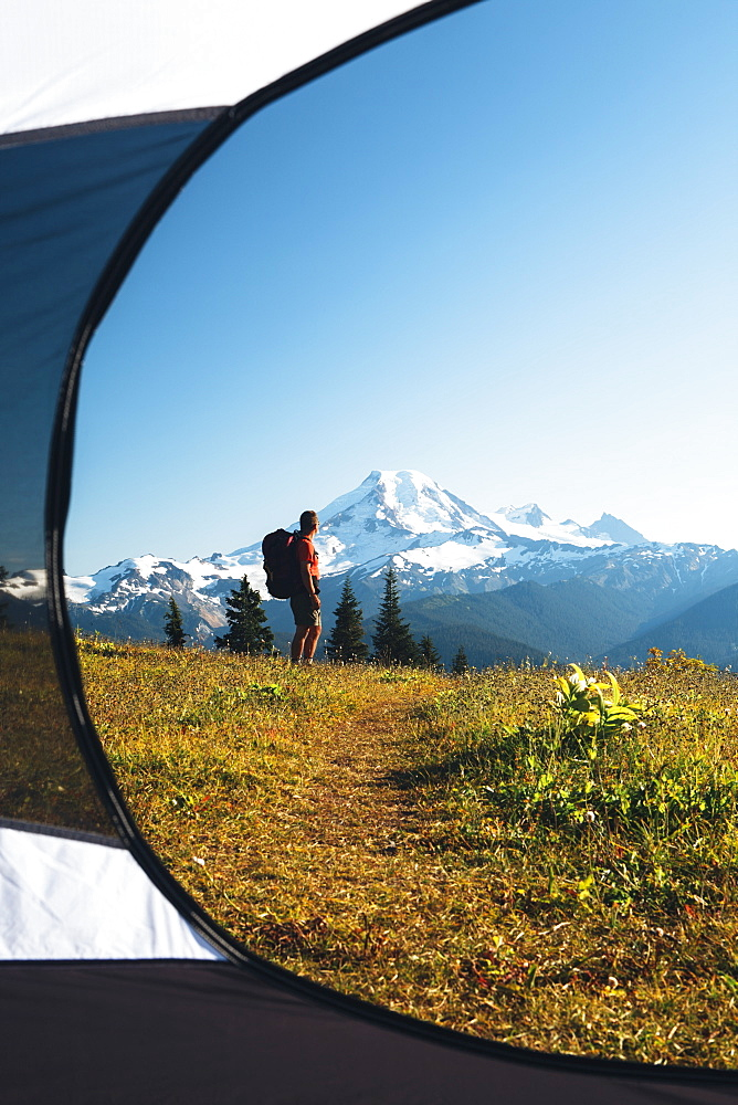 View from inside a camping tent of a man hiking across national forest land with Mount Baker in the distance, Cascades Range, Washington, USA