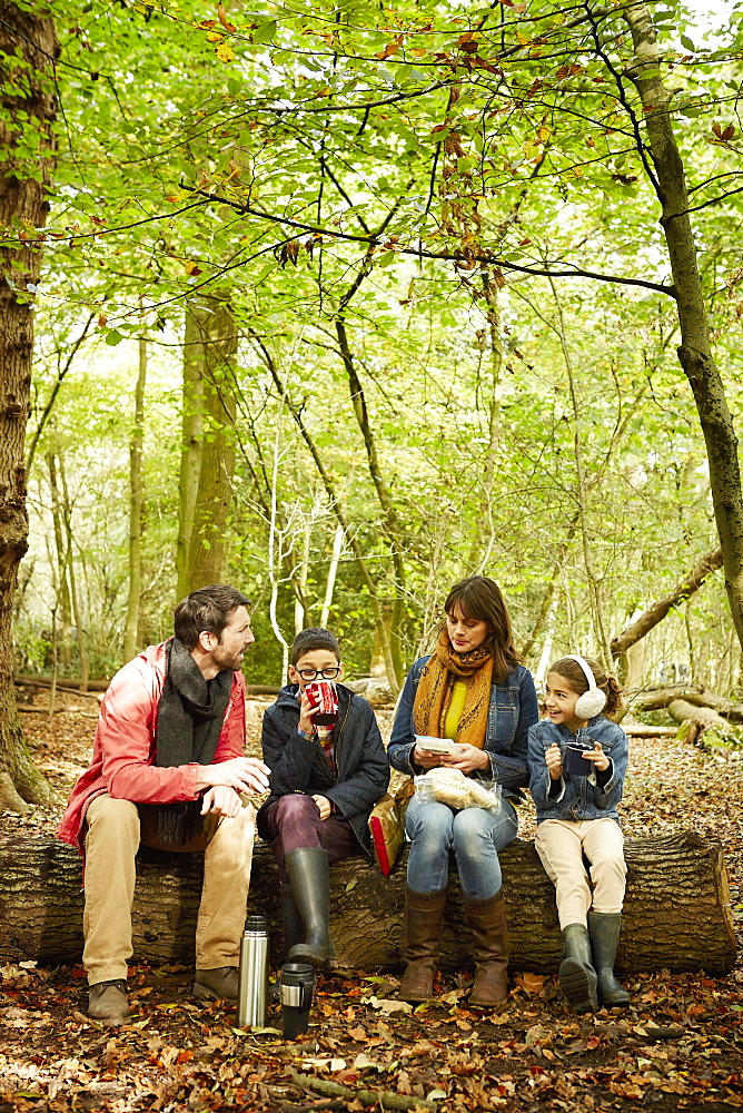 Beech woods in Autumn. Parents and two children sitting on a log having a picnic, England, United Kingdom