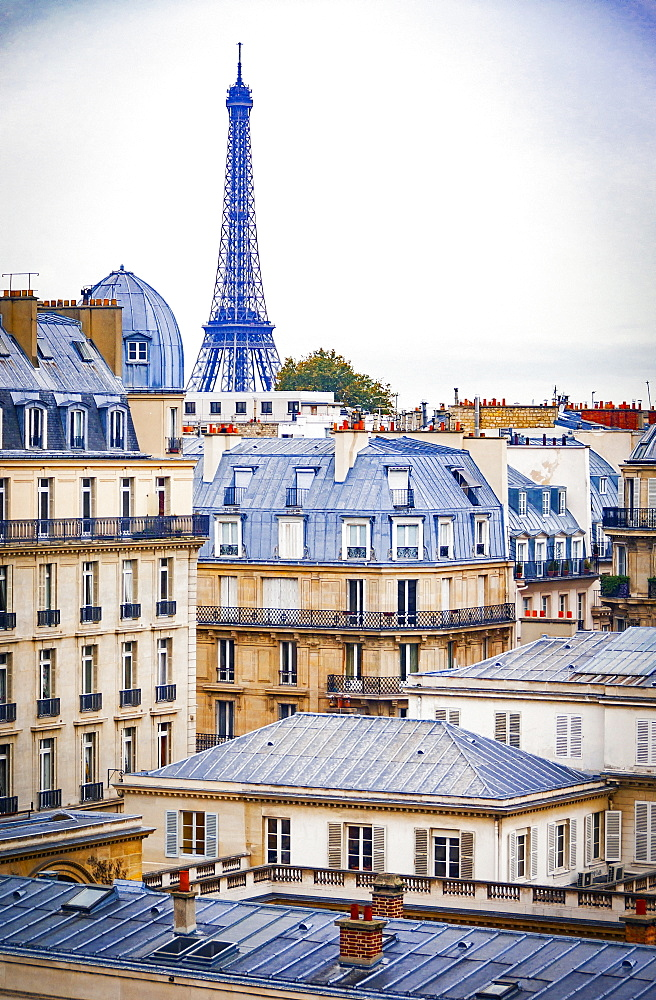 The rooftops of historic buildings in Paris and a view towards the Eiffel Tower.