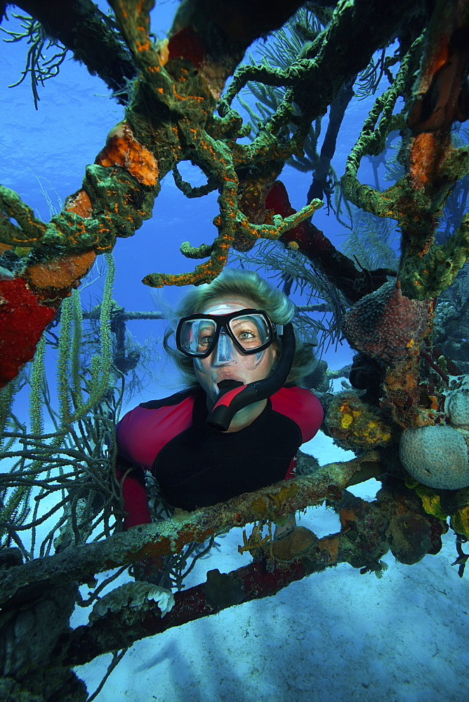 Snorkeler framed by the struts of a wreck of a plane on the seabed. - 1174-4676