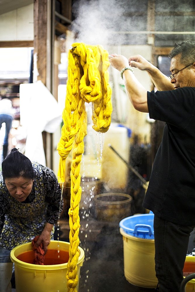 Japanese man standing in a textile plant dye workshop, holding aloft piece of freshly dyed bright yellow fabric, Kyushu, Japan