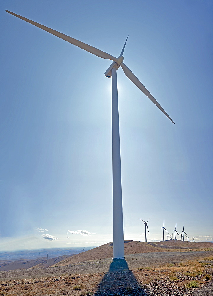 Wind Turbines, Ellensburg, Washington, United States of America