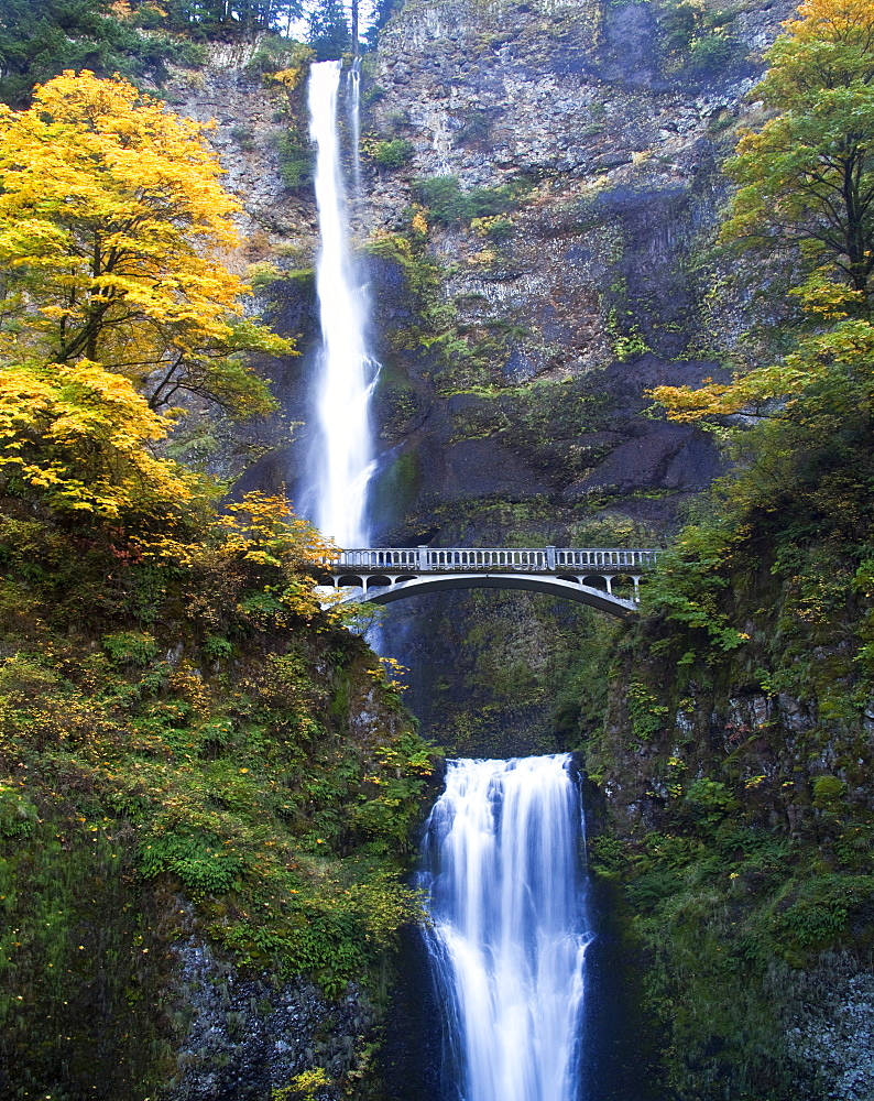 Waterfall and Bridge in Autumn, Oregon, United States of America