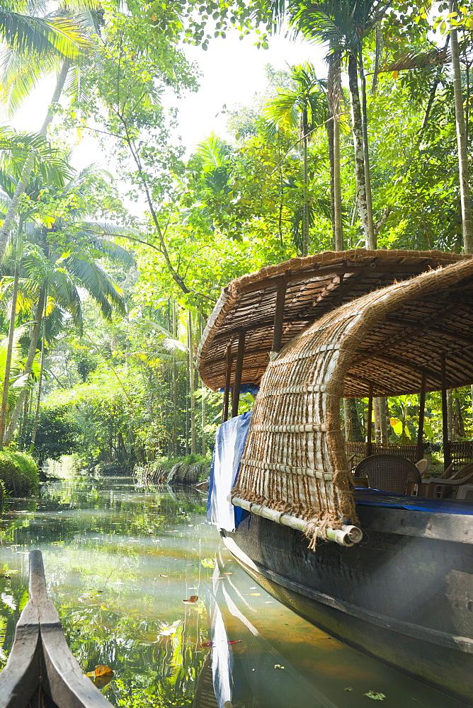 Boat in the Jungle, Cochin, Kerala, India