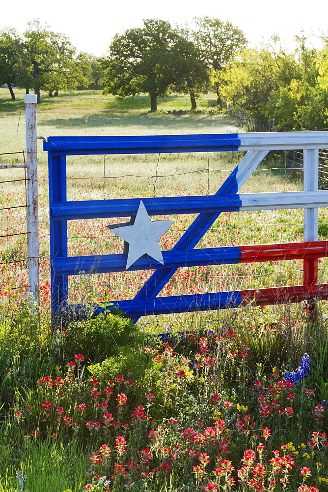 Fence With a Texas Paint Job, Texas, USA
