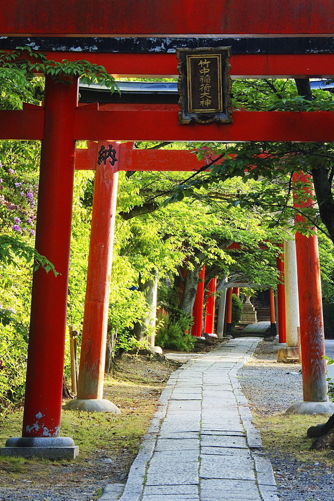Stone Path and Japanese Arches, Kyoto, Japan