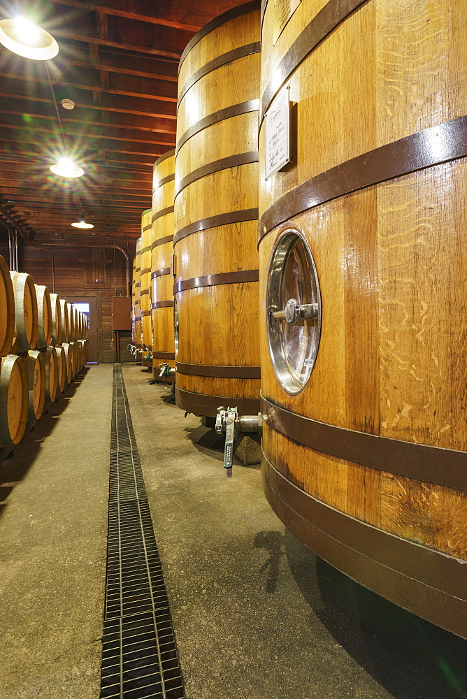 Close up of wine barrels in cellar, Napa, California, USA