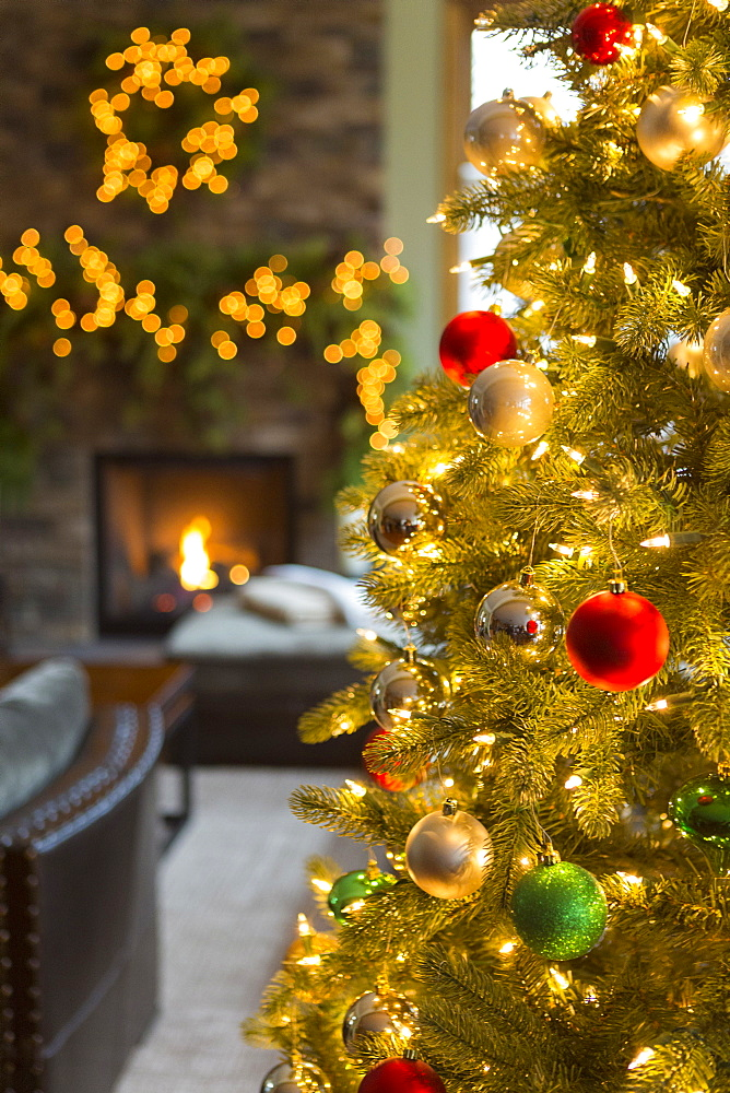 Close up of Christmas tree in living room - 1174-6088