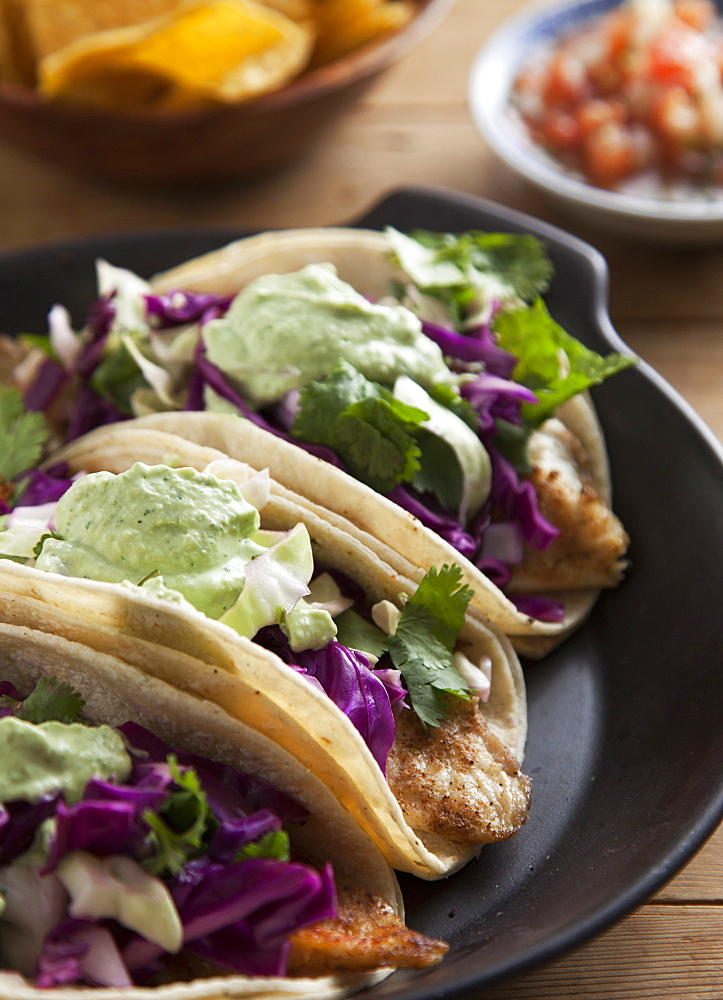 Close up of taco plate, Seattle, Washington, USA